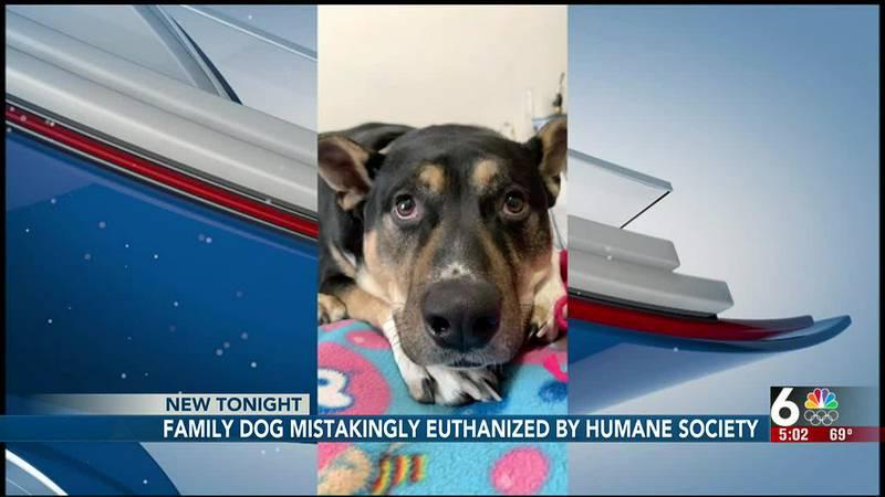 NHS accidentally euthanizes dog
