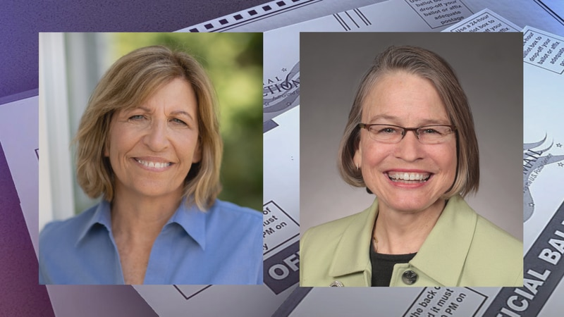 Democratic Iowa Congressional candidate Rita Hart conceded the very close race for the state's...