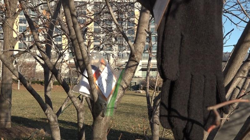 Kindness Agents hang winter gear at Turner Park