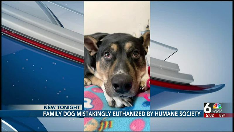 NHS accidentally euthanizes dog