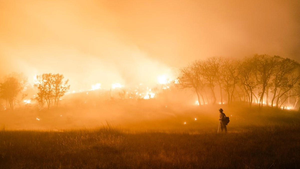 The Pine Gulch Fire has been burning since July 31 after it was sparked by lightning on Bureau...