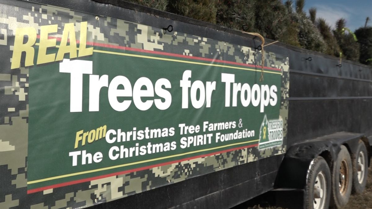 Trees for Troops campaign provides Christmas trees for those in uniform.