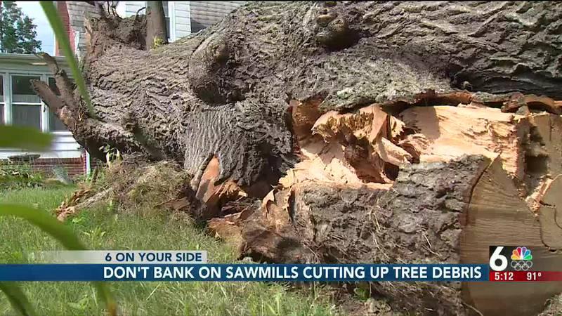 Don't bank on sawmills cutting up tree debris - 5 pm