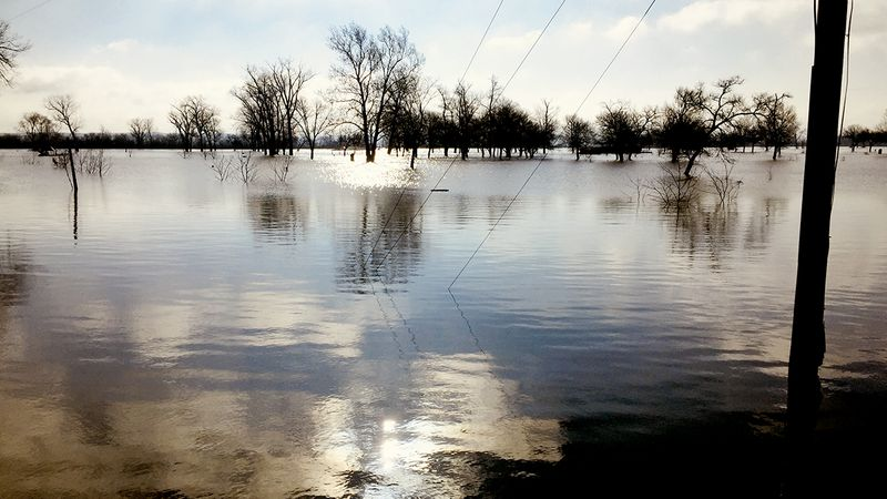 Flooding at Haworth Park in Bellevue on Wednesday, March 20, 2019.