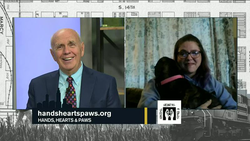 Today Dave Webber talks with Hands, Hearts and Paws about fostering and adopting dogs, and how...