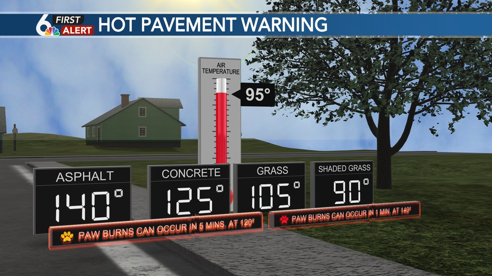 When asphalt reaches 140°, paw burns can occur after just one minute!