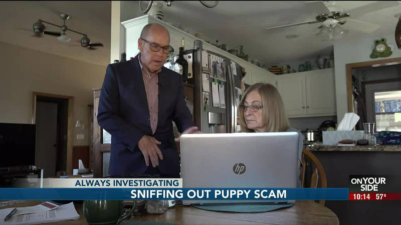 A woman from Plattsmouth is warning others about the potential risks of online pet shopping,...