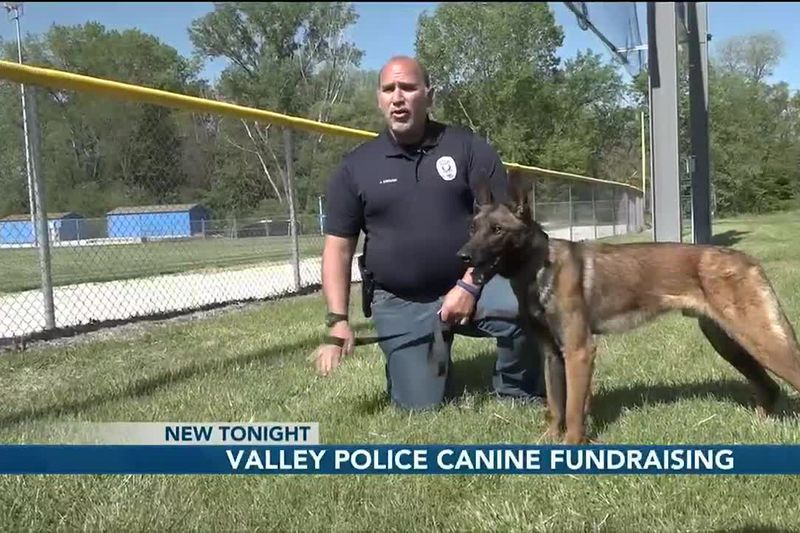 Valley Police canine fundraising - 10 pm