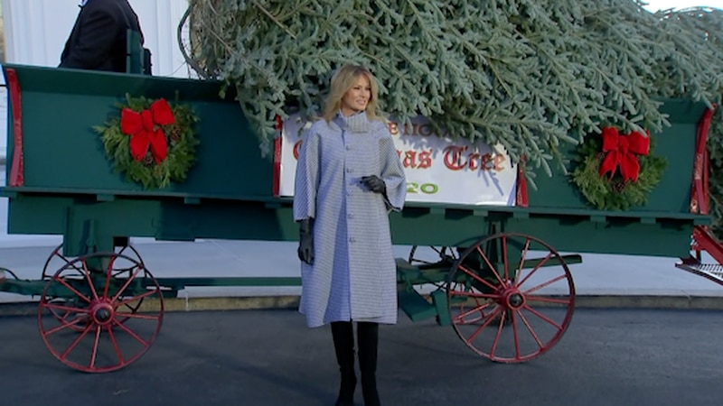 First Lady Melania Trump welcomes the White House Christmas Tree Monday.