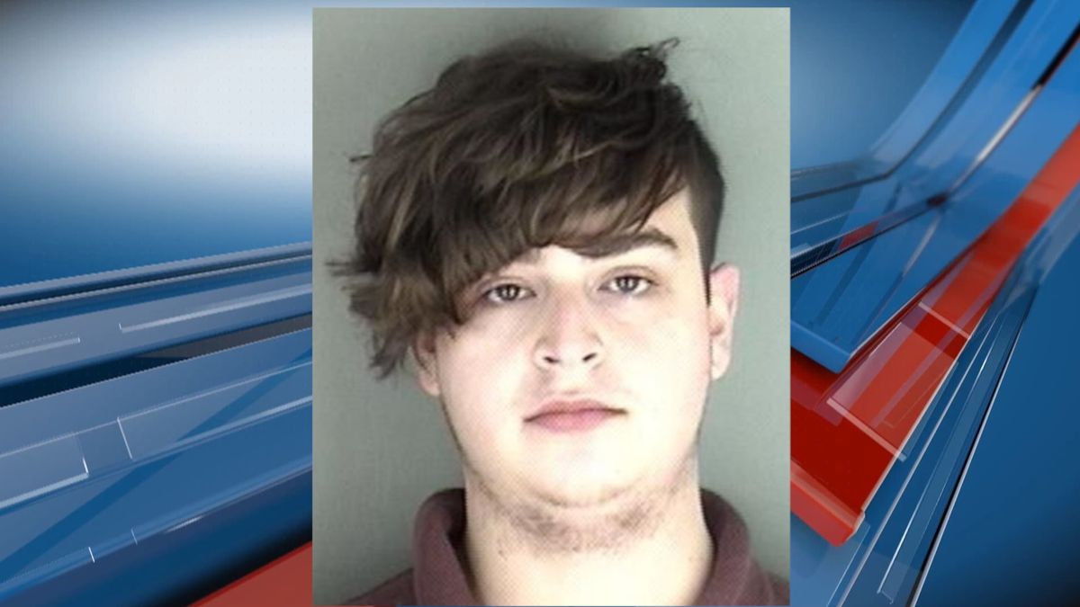 Joel Sink, 18, was arrested in connection to the White Lakes Mall fire Tuesday morning.