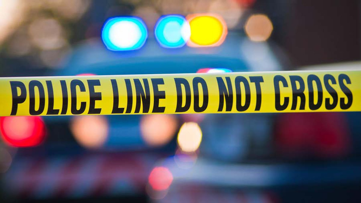 An 18-year-old from Fremont was killed during an automobile accident Tuesday afternoon after...