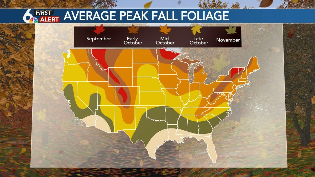 Average peak fall foliage across the Lower 48