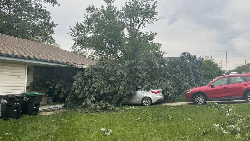 The Omaha-metro awoke to scenes like this after an overnight storm late Friday and into early...
